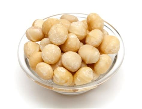 macadamia nuts dogs household items that could harm your