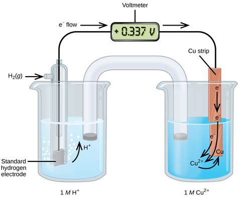 galvanic cell diagram 17 3 standard reduction potentials chemwiki