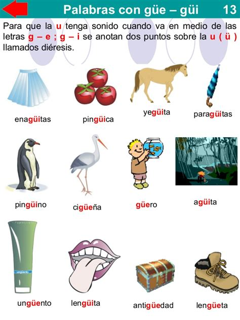 imagenes y palabras con gue y gui 2 186 grado