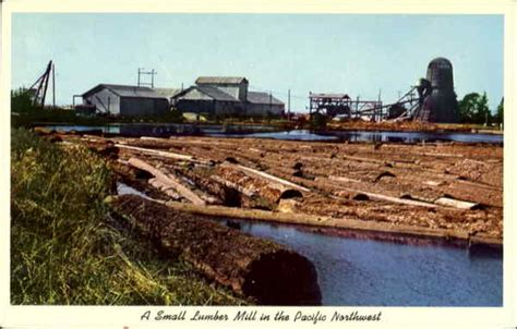 a small lumber mill in the pacific northwest logging
