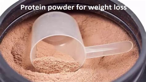 x weight loss powder protein powder for weight loss how to choose best
