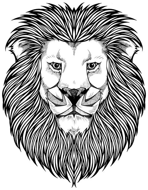 lion coloring page for adults 656 best images about adult coloring pages on pinterest