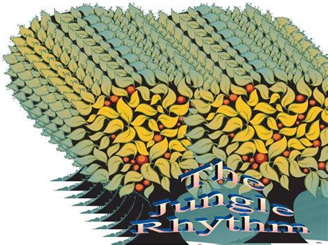 jungle rhythm jungle rhythm