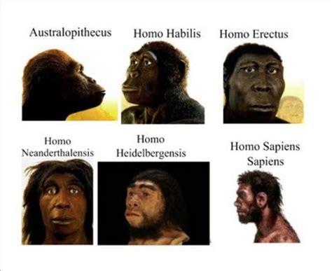 puchitas con los primeros pelos 191 por qu 233 perdimos el pelo los origenes del hombre