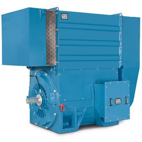 w60 line medium voltage three phase induction motor low and high voltage machines