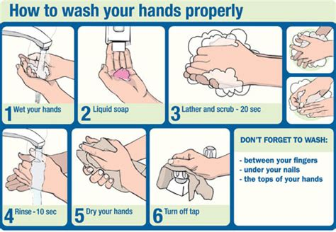how to wash hand properly in step by step and propery national washing awareness week why not washing your should be a crime health care