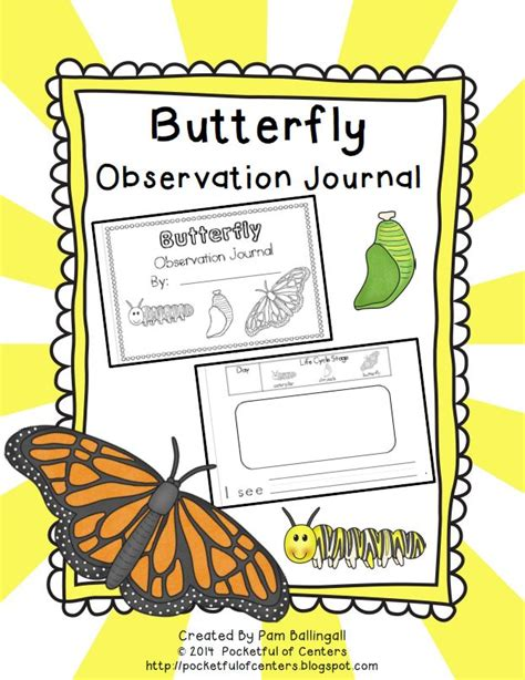 printable caterpillar observation journal 22 best classroom science butterfly images on pinterest