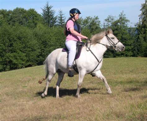 Dan Kegunaan Sho Kuda pangkahbulat kuda besar vs kuda kecil