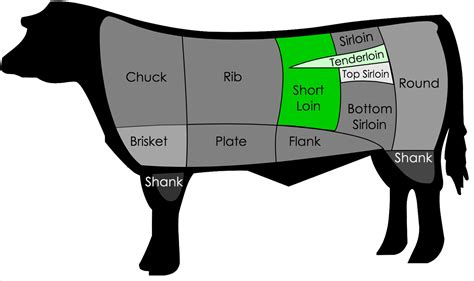 diagram of steak cuts beef cuts diagrams with descriptions diagram site