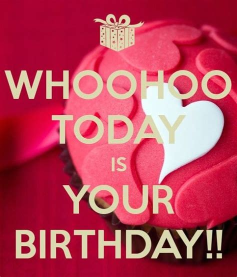 Birthday Quotes For Big From 91 Best Images About Birthday Quotes On Pinterest Happy