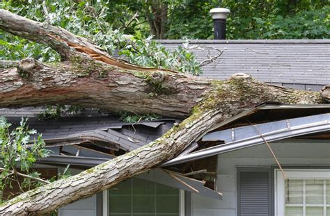 icbc boat trailer insurance cost how to protect your house from wind storms in bc