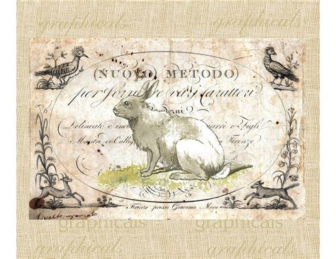 old vintage images vintage rabbit on antique ephemera animals spring by