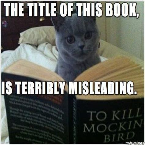 To Kill A Mockingbird Cat Meme - pinterest the world s catalog of ideas