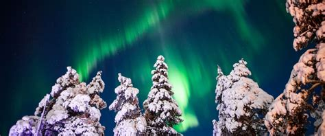 christmas northern lights holdiays