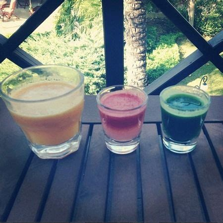 Wheatgrass Detox Liver by 17 Ideas About Brook Three On Beautiful