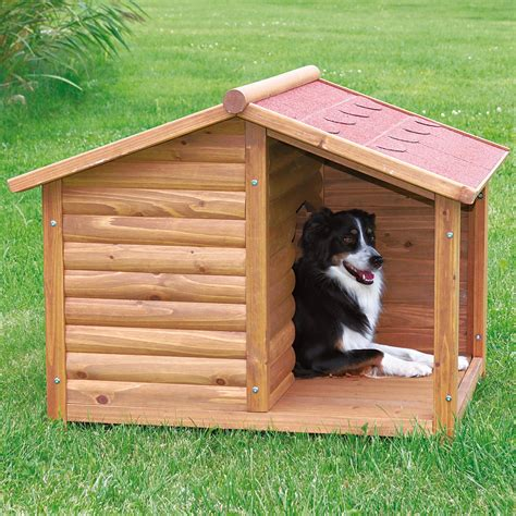 dog in house diy dog house for beginner ideas