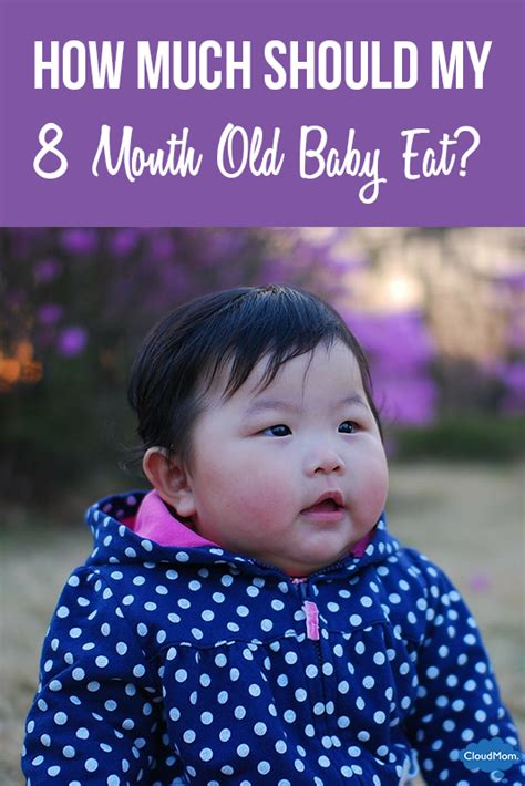 how much should my eat how much should my 8 month baby eat cloudmom