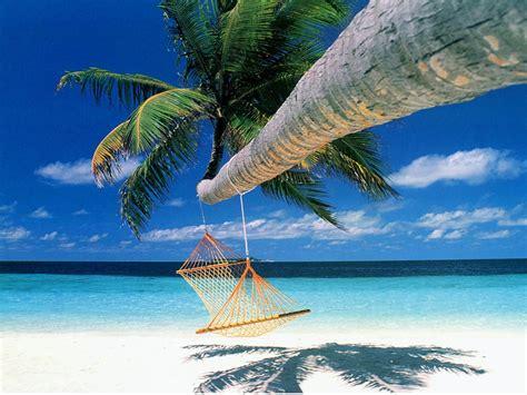 Florida Keys Wedding Packages – Key Largo Lighthouse & Marina   Weddings Venues & Packages