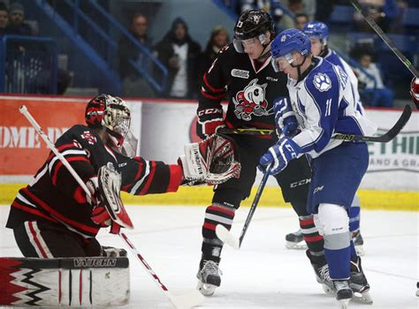 save a sudbury icedogs freeze out wolves sudbury