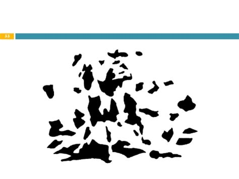 imagenes ocultas en otras autor rupert sheldrake presenta dra marta rizo garc 237 a