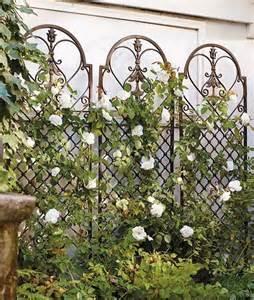 wrought iron wall trellis best 25 metal garden trellis ideas on