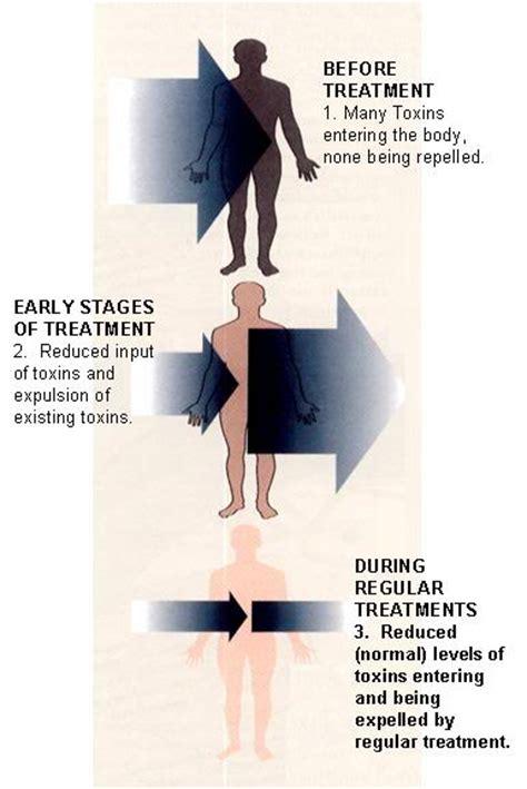 What Is A Healing Crisis Detox Reaction by Healingcrisis1