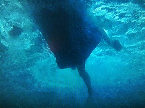 jaws scene we re going to need a bigger boat we re going to need a bigger boat jaws trauma swells of