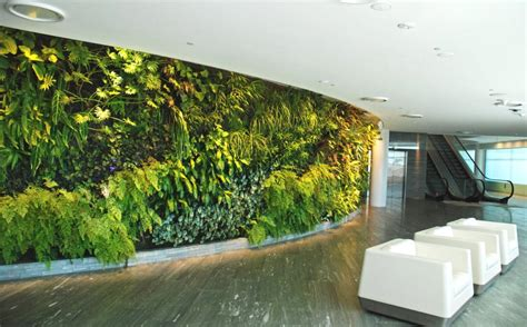 the perks of indoor green walls asia green buildings