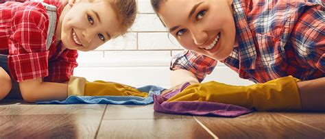 house cleaning seattle house cleaning company seattle viola cleaning