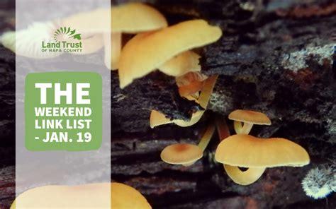 Weekend Link Jan 27 by The Weekend Link List Jan 19 Land Trust Of Napa County