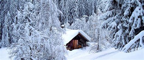 baita di montagna con camino vacanze in montagna due cuori e uno chalet