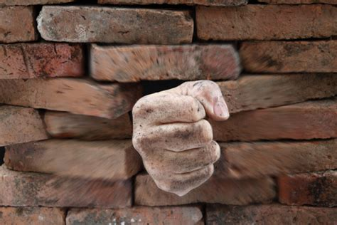 remove the wall to your greatest potential � 3q leadership