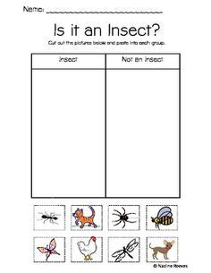 images of bee curriculum for preschool 1000 images about insect unit on pinterest insects