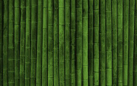 Eco Friendly Home Decor by Bamboo Wallpaper 8626