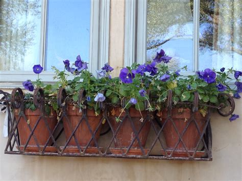 wrought iron window boxes wrought iron window box planter project no 3