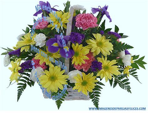 Imagenes Flores Bellas Gratis | elegantes flores bonitas para descargar gratis para novios