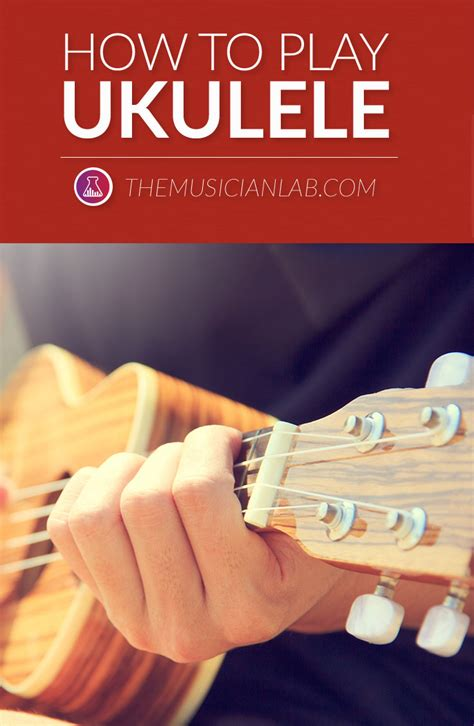 how to play ukulele in 1 day the only 7 exercises you need to learn ukulele chords ukulele tabs and fingerstyle ukulele today best seller volume 4 books learn how to play ukulele 101 ultimate guide for
