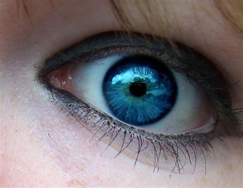eye color f u n n y w o r l d eye color