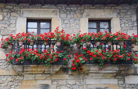 Decorer Balcon by Quelles Fleurs Pour D 233 Corer Votre Balcon