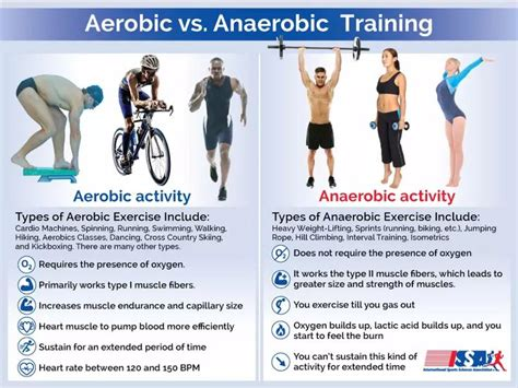 the 25 best anaerobic exercise ideas on
