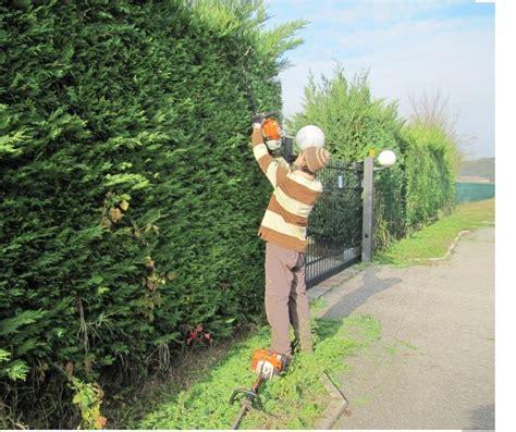 corso per giardiniere lavoro giardinieri ora serve la patente un corso degli