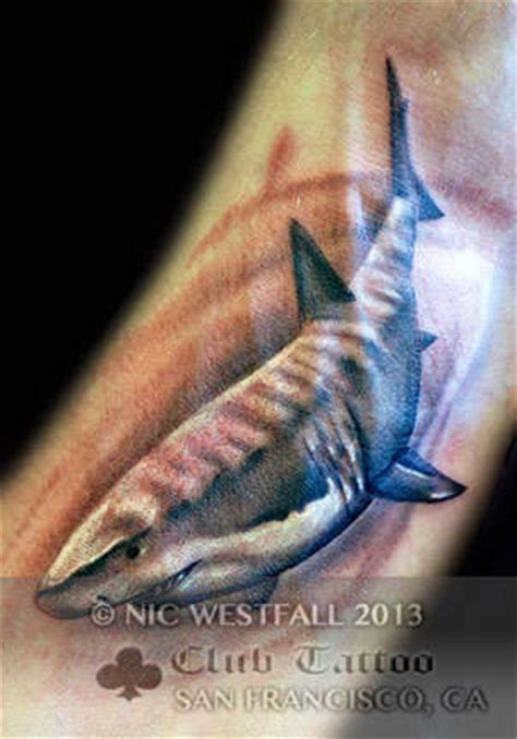 club tattoo sf nicwestfall animals shark fish sharkweek