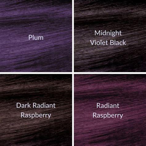 purple hair color chart best 25 plum hair dye ideas on plum hair