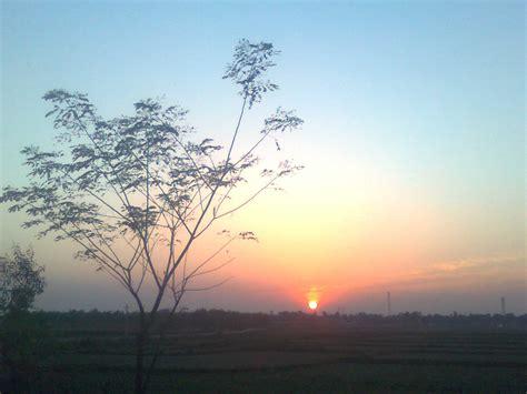 In Morning file binuria in the morning jpg wikimedia commons
