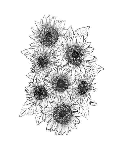 sunflower outline tattoo sunflower by sharksidedown on deviantart