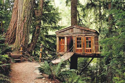 treehouse living suburban cing co living in the trees amazing treehouses