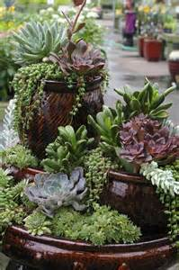 succulents are a great low maintenance way to add