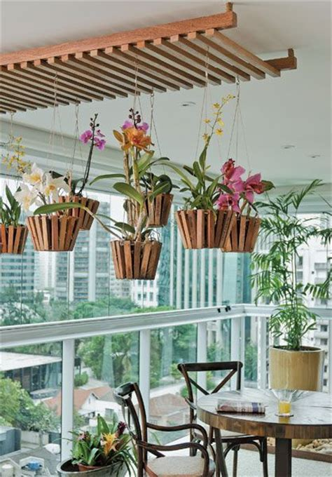 60 best gardening orchid education images on pinterest