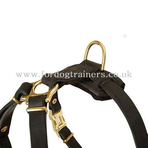 small puppy harness small harness for puppies harness for small breeds 163 44 90