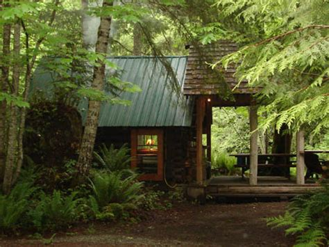 cowichan river accommodations trappers cabin